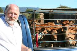Ron Garthwaite of Claravale Farms, with Jersey calves