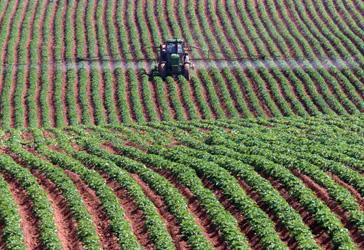 A farmer sprays his potato crop in PEI. Shaun Best/Reuters photo